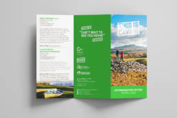 This is Cavan | Brochure | Homebird Design